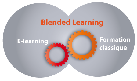 Blended learning : l'articulation réussie du e-learning et de la formation en présentiel