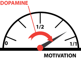 Jauge motivation dopamine