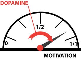 Jauge motivation dopamine
